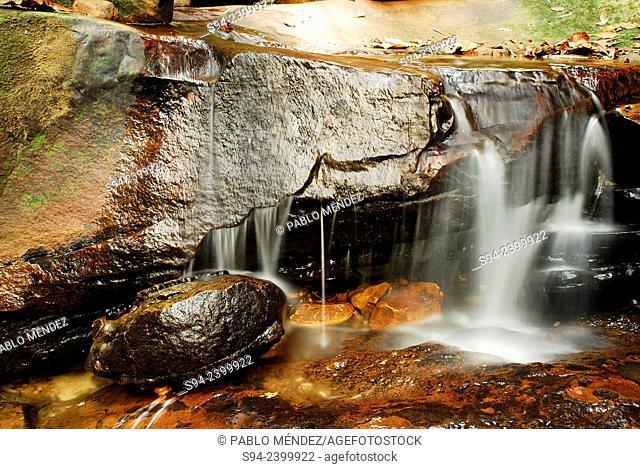 Waterfall of a stream in Kubah, Sarawak, Malaysia, Borneo