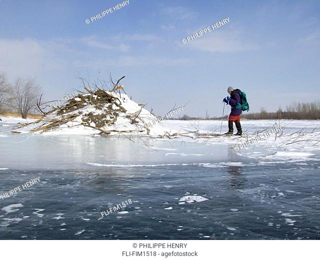 Woman Skiing on Frozen Lake looking at a Beaver Lodge, Boucherville Islands Park, Quebec