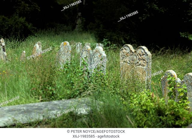 unkempt overgrown gravestones in the churchyard of St Mary's church in Selborne