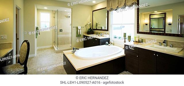 Master bathroom, panoramic