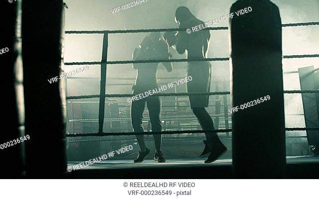 Male and Female Boxer train together in the Boxing Ring building up to a fight