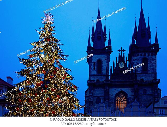 Christmas tree in Prague, in front of the Tyn Church