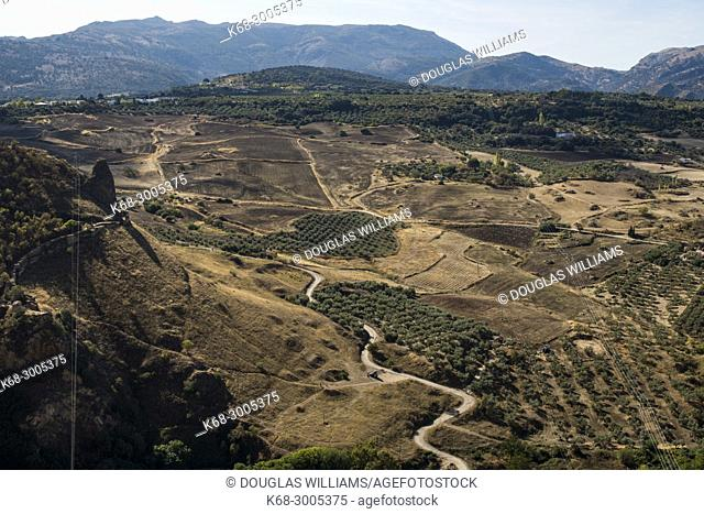 Farmlands, Ronda, Malaga, Spain