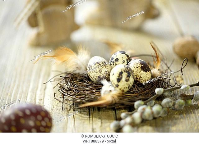 Easter Decoration, Quail Eggs In Easter Basket, Osijek, Croatia, Europe