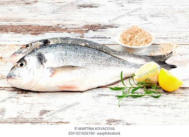 Marine seafood background