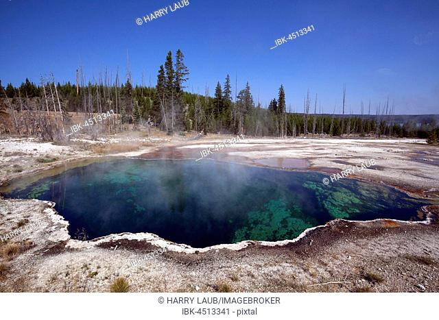 Abyss Pool, West Thumb Geyser Basin, Yellowstone National Park, Wyoming, USA