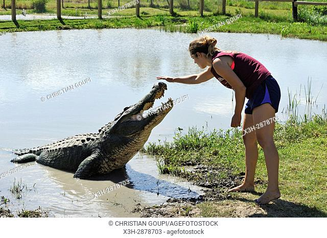 young woman working at Gator Country Wildlife Adventure Park, Beaumont, Texas, United States of America, North America