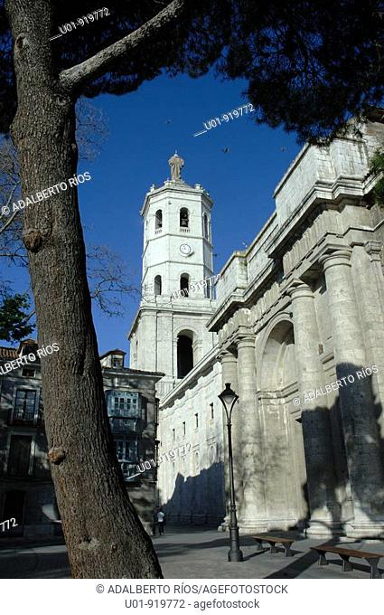 Cathedral. Valladolid. Spain