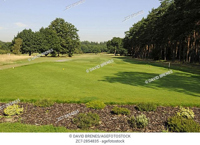 View from behind the 1st Tee to Golf Course, Leatherhead Golf Club, Leatherhead, Surrey, England