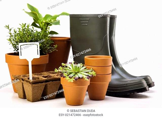 Gardening equipment with plant