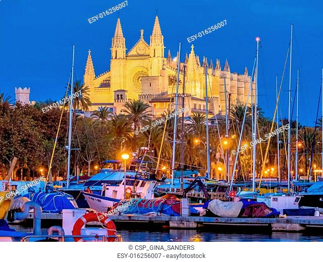 spain, mallorca, palma cathedral