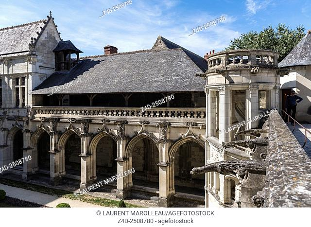 Gargoyles and Spiral Staircase of Psalette Cloister. Saint Gatien Cathedral, Tours, Indre et Loire, Loire Valley, France, Europe