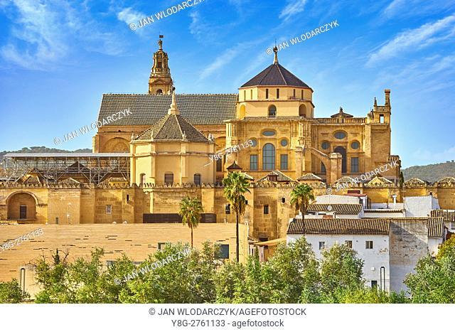 Cordoba Mosque, Andalucia, Spain