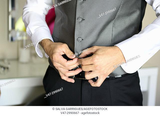 The groom dresses for the wedding, buckles the vest