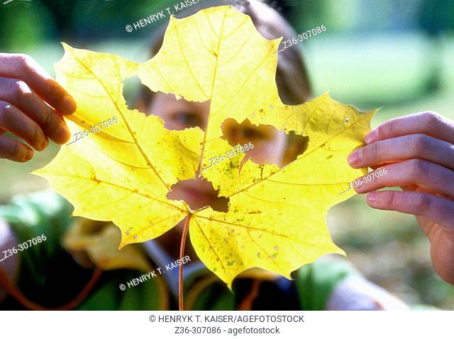 Child girl with yellow leaf cut as face