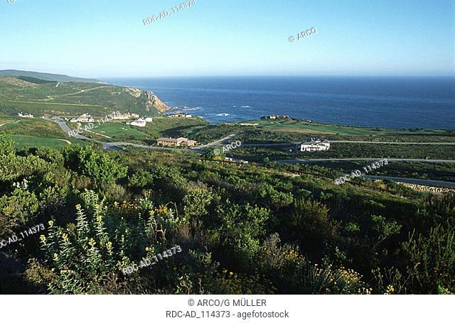 Coast Knysna Eastern Cape South Africa Garden Route