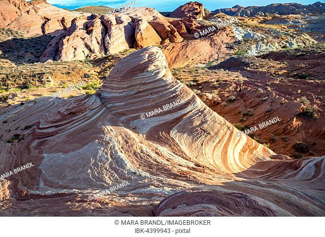 Fire Wave Rock in the evening light, with Sleeping Lizard Rock, Valley of Fire State Park, Nevada, USA