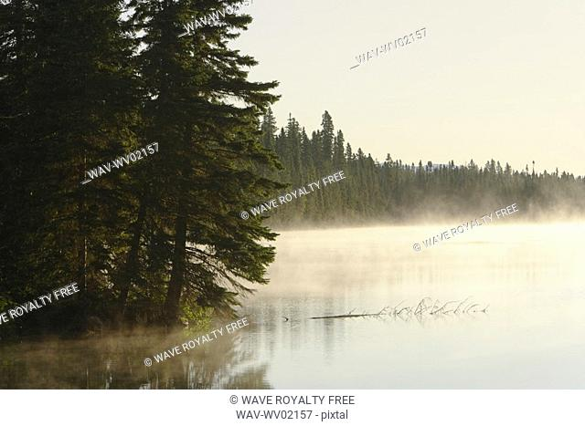 Mist at Étang-à-la-Truite Trout pond, Gaspesie, Quebec