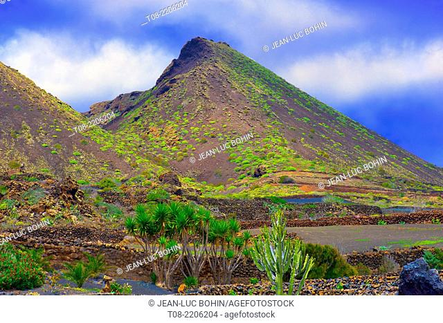 spain; canary islands; lanzarote : mountain