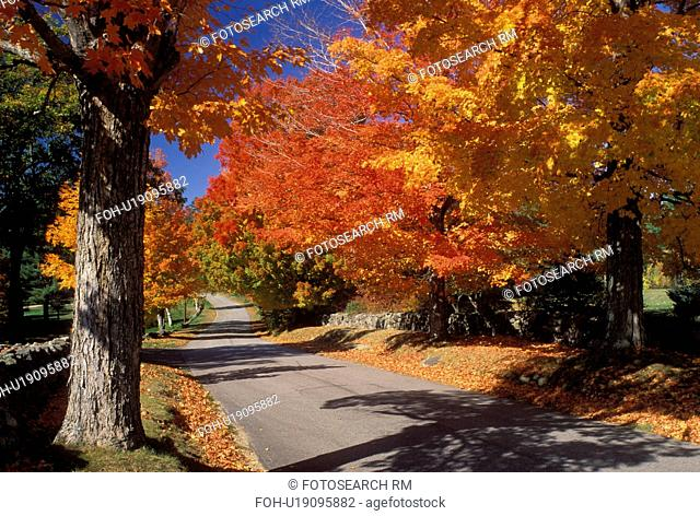 New Hampshire, East Andover, NH, Colorful fall foliage along Maple Street in East Andover in the fall