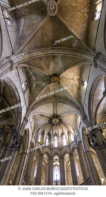 Cathedral, Tortosa Town, Terres de l'Ebre, Tarragona, Catalunya, Spain