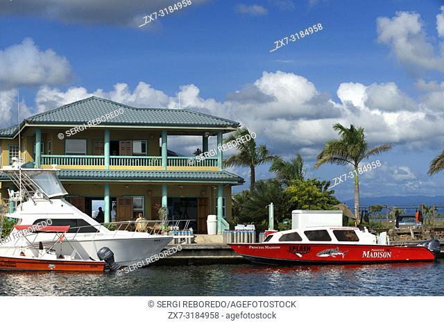 Splash dive center in Placencia Belize