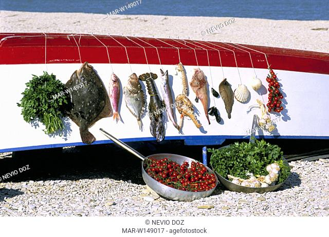 boat, fishes