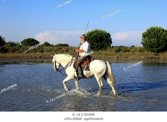Guardians on camargue horses Stock Photos and Images   age fotostock e532bc194ad