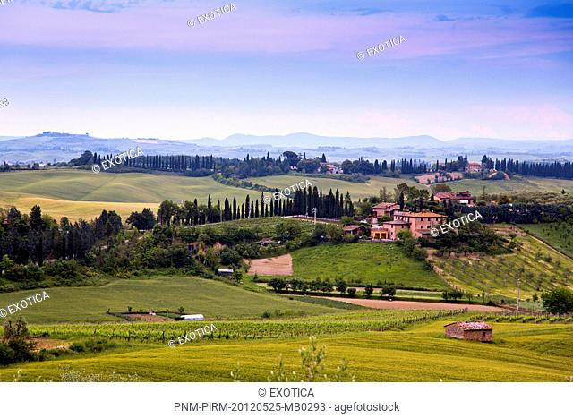 Fields with mountain range in the background, Siena, Tuscany, Italy