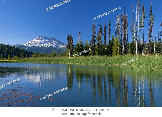 South Sister from Hosmer Lake, Cascade Lakes National Scenic Byway, Deschutes National Forest, Oregon