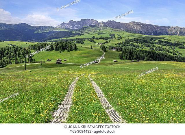 Ortisei, Alpe di Siusi, Dolomites, Trentino, Alto Adige, Italy, Europe