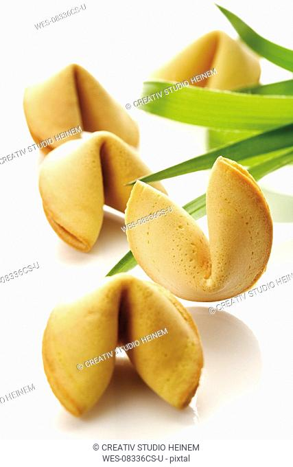 Fortune cookies, close-up