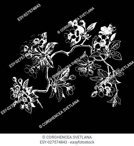 Vintage wallpaper seamless rose flower pattern on circles polka background. Vector illustration