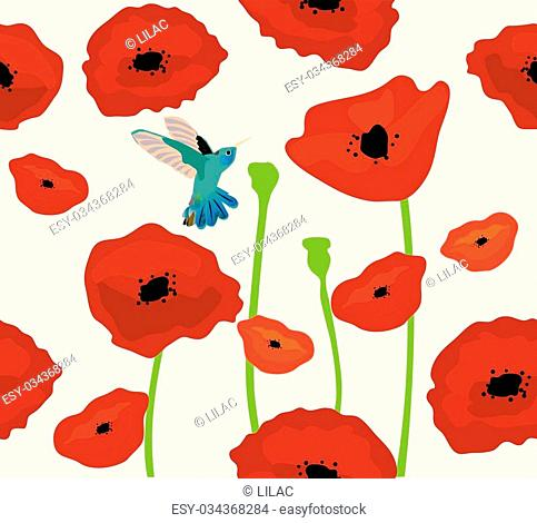vector poppies background with hummingbird