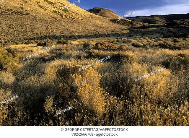 Foot of Abert Rim, Abert Rim Wilderness Study Area, Lakeview District Bureau of Land Management, Oregon