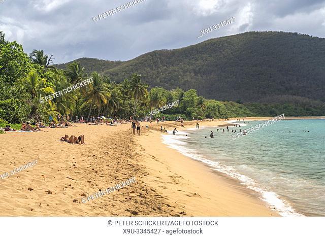 Am Strand Plage de Grande Anse bei Deshaies im Norden von Basse-Terre, Guadeloupe, Frankreich | at the beach Plage de Grande Anse near Deshaies village in the...