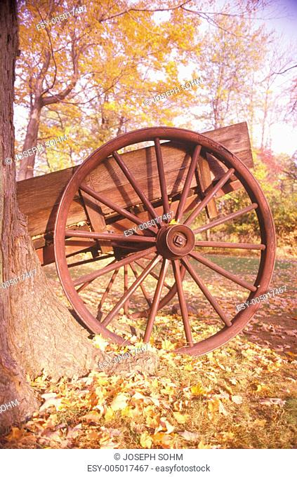 Detail of wagon in autumn at the Historical Henry Wick House, Morristown Park, New Jersey