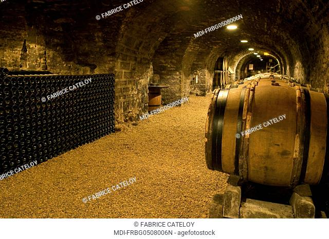 France - Burgundy - Beaune - Cellars of the Couvent des Cordeliers