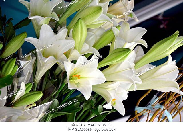 Close View of Flower Arrangement