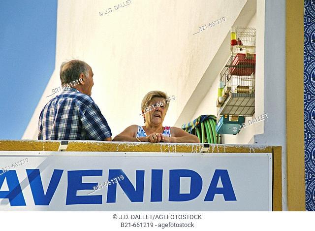 Spain. Huelva. Ayamonte. Canary Birds