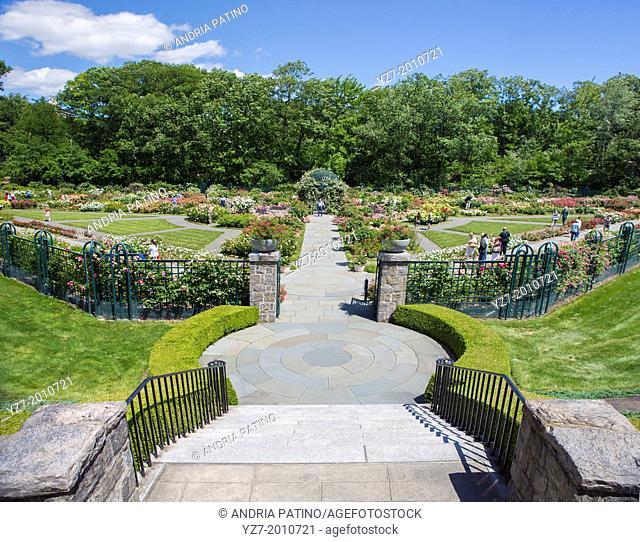 The Peggy Rockefeller Rose Garden at the New York Botanical Garden, Bronx, NY, USA