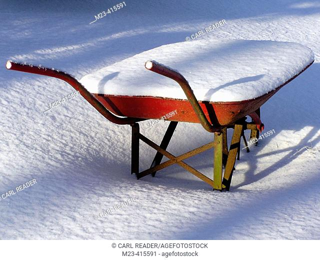 A winter morning reveals a wheebarrow filled with snow after a night's storm