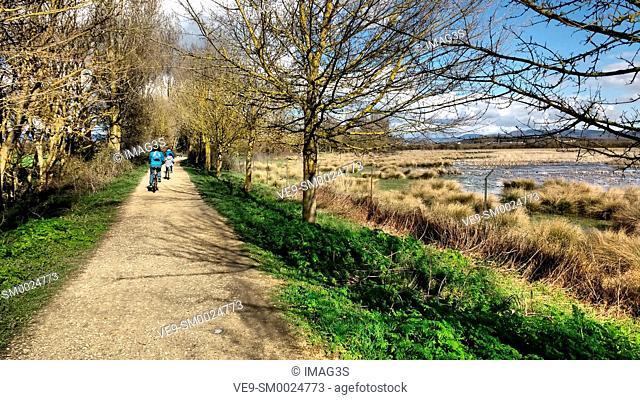 Lake of Salburua green road, Vitoria Gasteiz, Alava, Basque Country, Spain