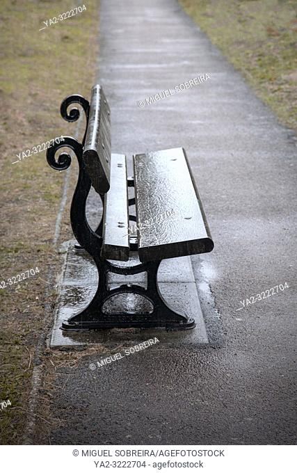 Wet Bench on Path