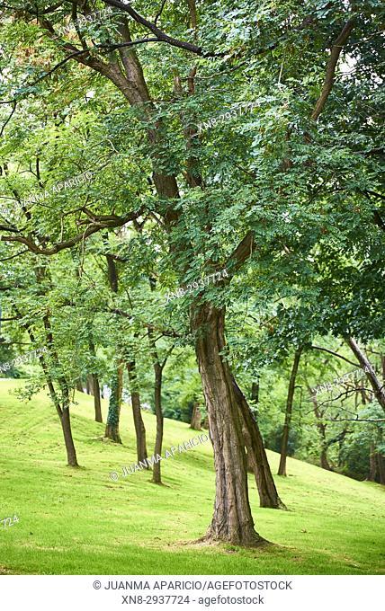 Artxanda Park, Bilbao, Biscay, Basque Country, Euskadi, Spain, Europe