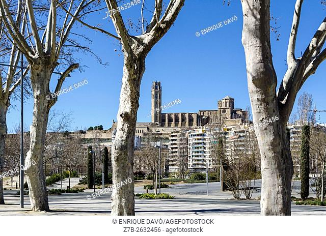 A perspective Cathedral view in Lleida city, closed to the Segre river, Catalonia, Spain