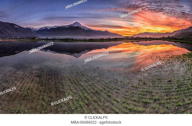 Natural reserve of Pian di Spagna flooded with Mount Legnone reflected in the water at sunset Valtellina Lombardy Italy Europe