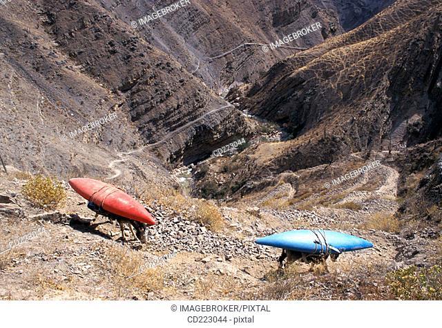Donkeys carry kayaks, Colca Canyon, north of Arequipa, Peru