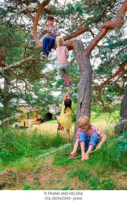 Group of young friends playing outdoors, climbing tree