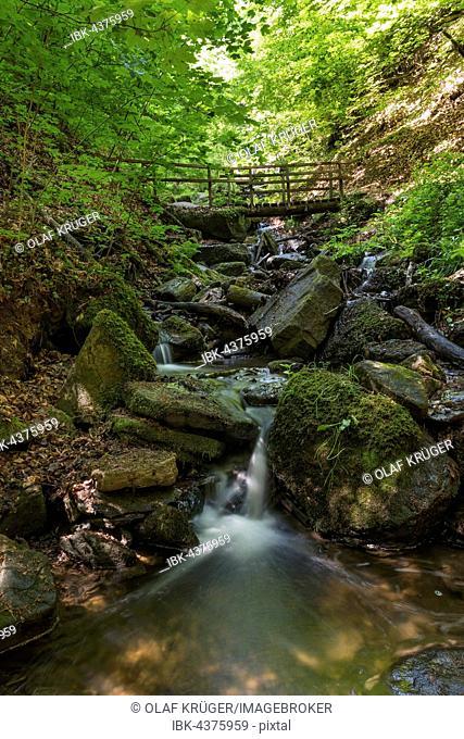 Bridge over Heslacher Wasserfälle, Heidenklinge Valley, Heslach, Stuttgart, Baden-Württemberg, Germany, Europe